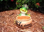 Frog Welcome Planter