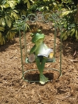 Frog on a swing